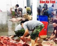 Quy định tạm thời giá dịch vụ giết mổ gia súc tập trung