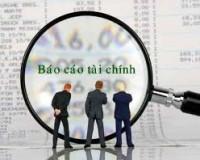 Báo cáo tài chính năm 2014